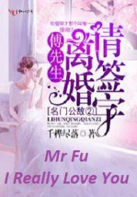 Mr Fu, I Really Love You
